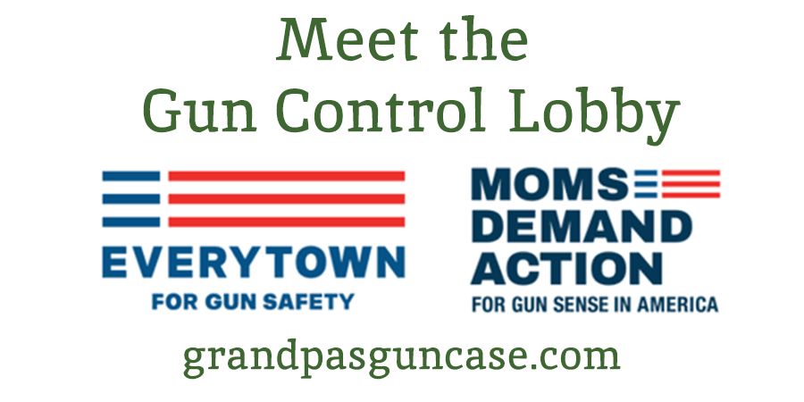 Meet the Gun Control Lobby