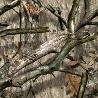 Mossy Oak Treestand